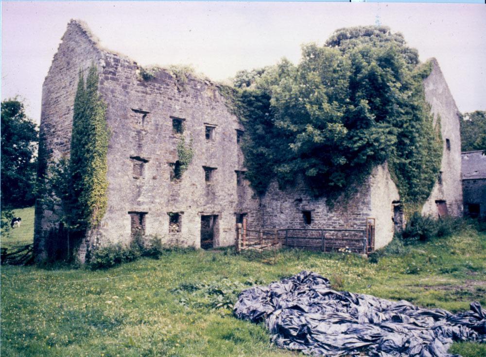 Castlemarket Rosconnell 4.jpg