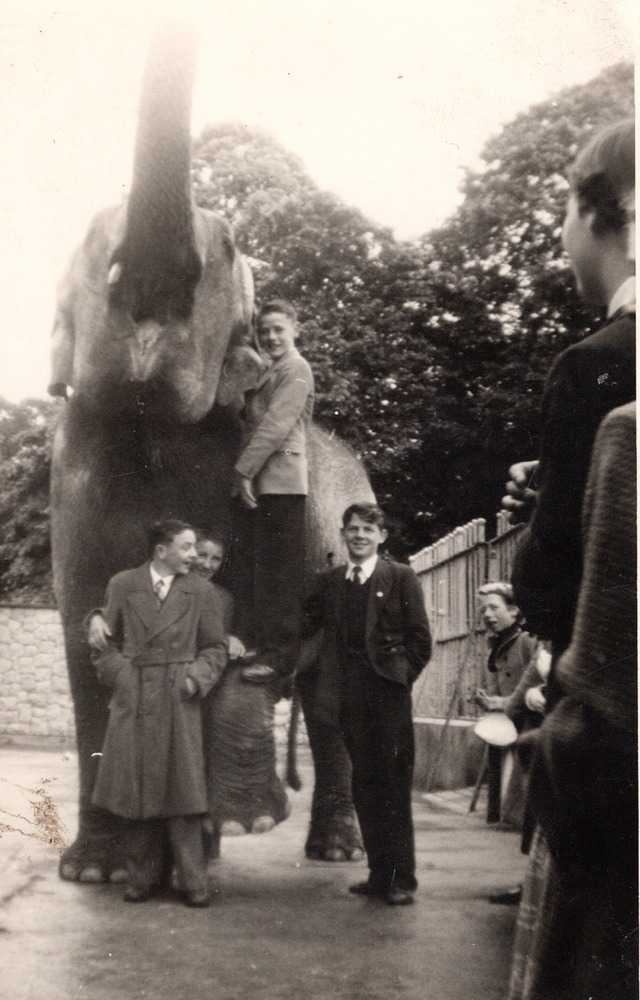 0017 Vist to Zoo cira 1950s k.png