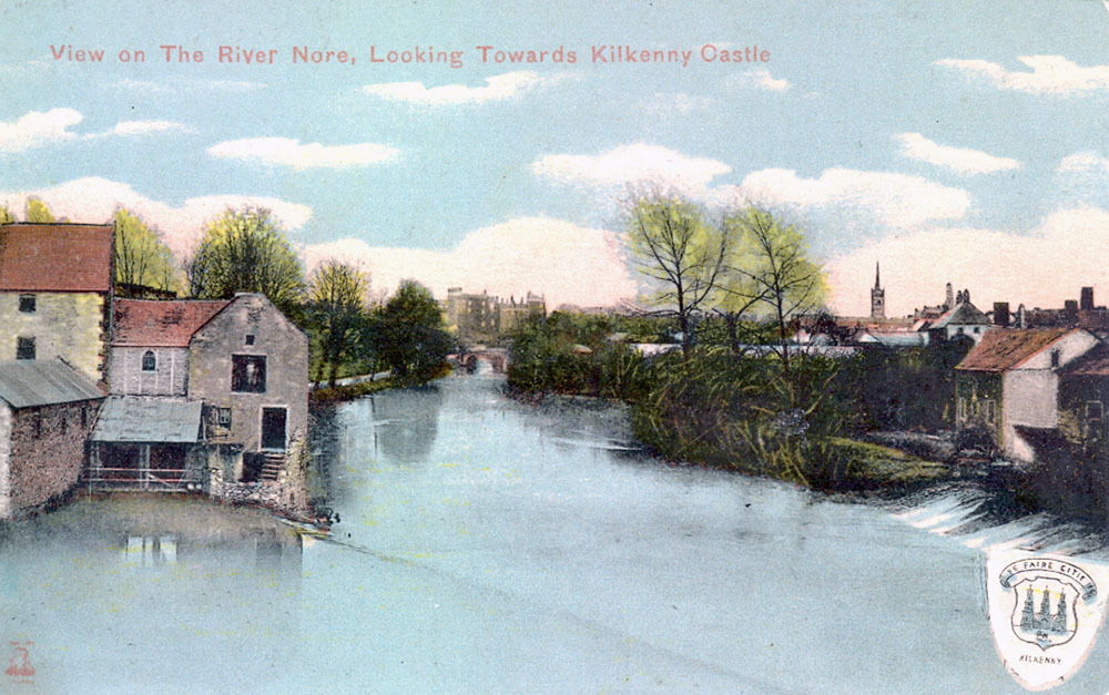 View on the River Nore0001.jpg
