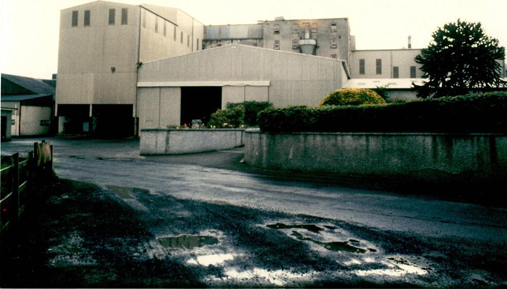 Grange Lower Grain Mill Goresbridge 2.jpg