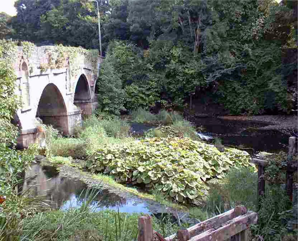 Castlecomer Bridge, over Dinnin River.jpg