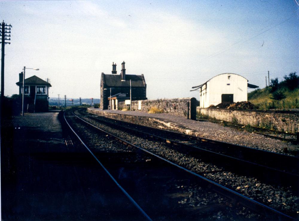 Newtown Thomastown 40001.jpg