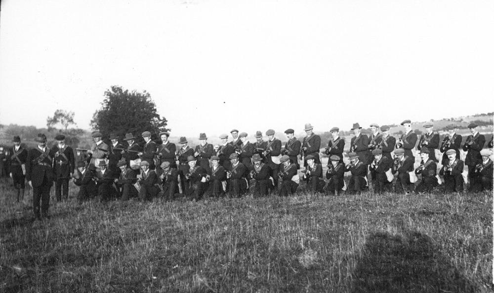 Assembly of Irish Volunteer Force