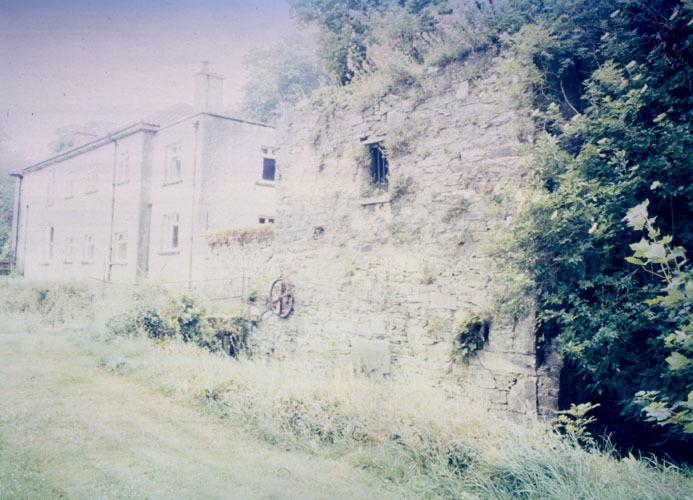 Dangan, Thomastown, Grain Mill 20001.jpg