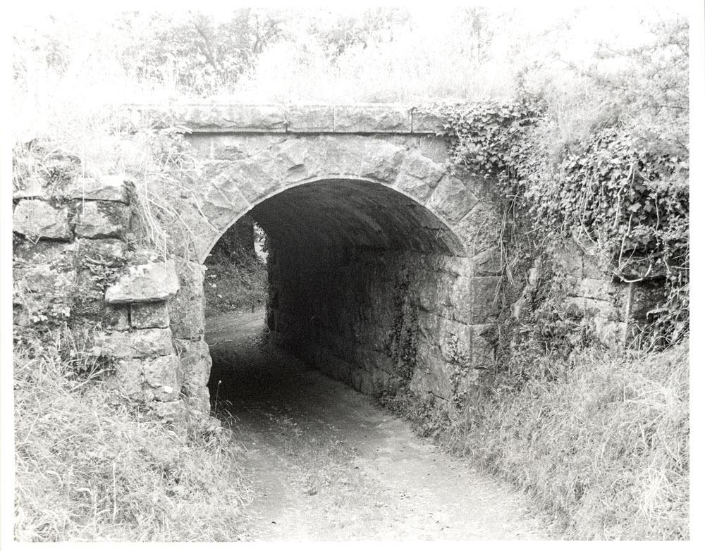 Loughmerans, Dunmore0001.jpg