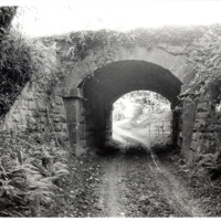 Dunkitt 50001.jpg