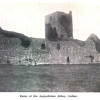Augustinian Abbey, Callan0001.jpg