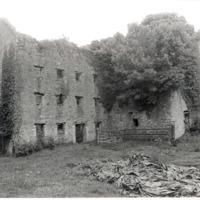 Castlemarket Rosconnell 3.jpg